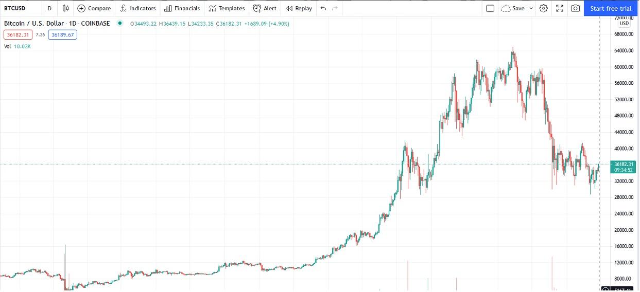 Bitcoin Buffet Rat Poison